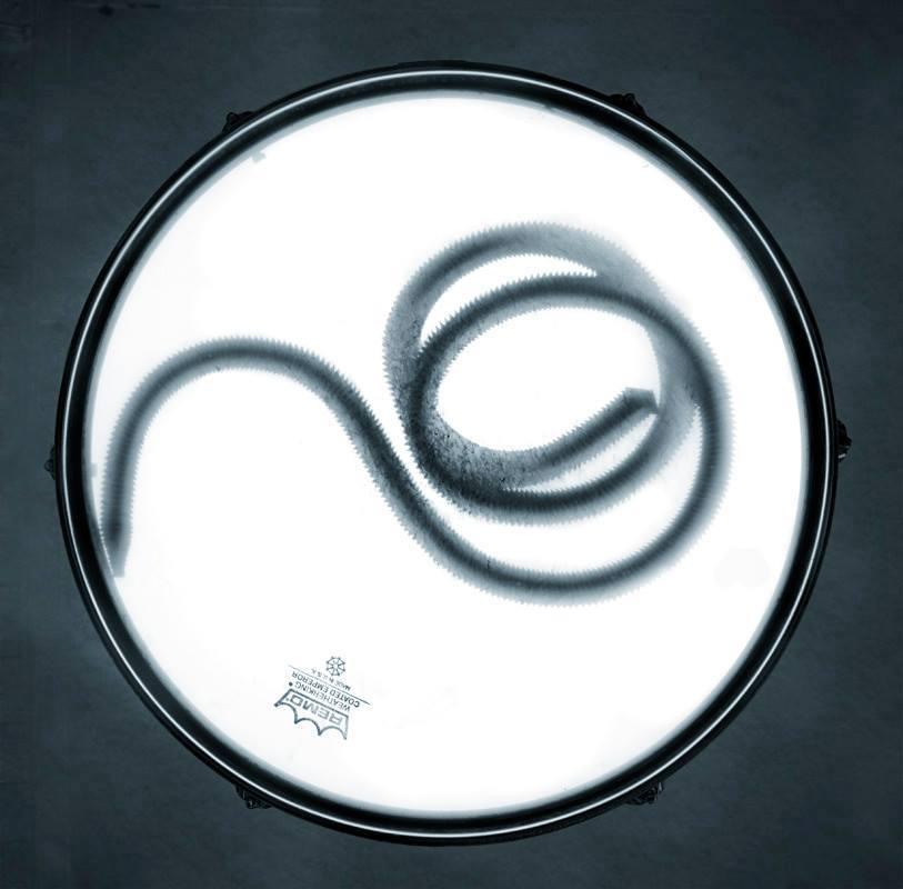 Fig. 1 (Emperor Worm)